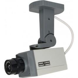 Indoor Dummy Camera