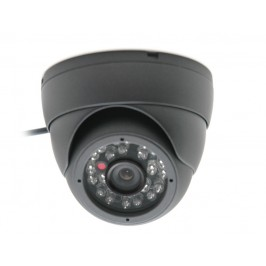 Vandal Proof Sony Dome Camera Indoor or Outdoor