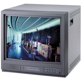21 inch Color Monitor with Audio
